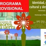 Programa provisional encuentro Santa Tecla 2013