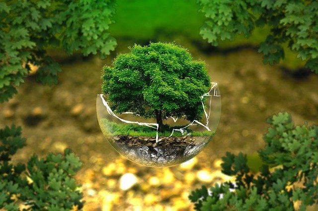 RIET-transicion-ecologica